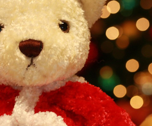 bear, christmas, and cute image