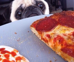 baby, lol, and pizza image