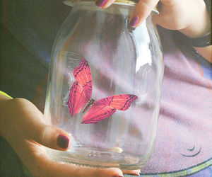 butterfly, pink, and jar image