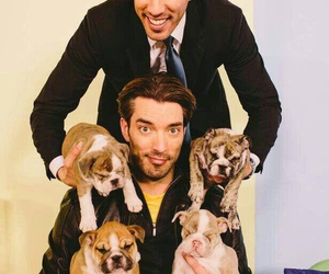 guys, Hot, and puppies image