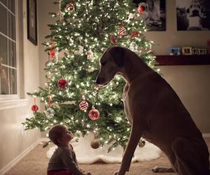 dog, christmas, and baby image