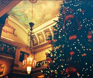 beautiful, Christmas time, and christmas tree image