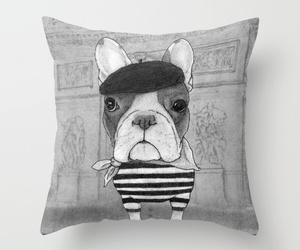french bulldog and cute image