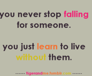 crush, falling, and learn image