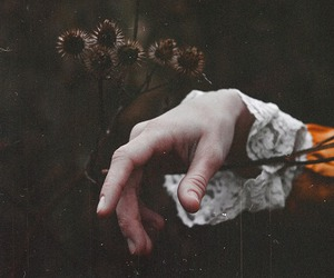 flowers, hands, and hand image