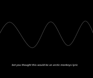 arctic monkeys, funny, and lyric image