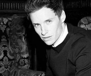 eddie redmayne, actor, and british image