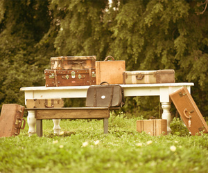 forest, suitcase, and table image