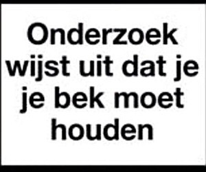 dutch, nederlands, and quotes image