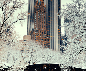 Central Park, snow, and new-york image