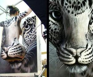 amazing, beautiful, and tigris image