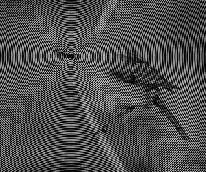 acid, cool, and bird image