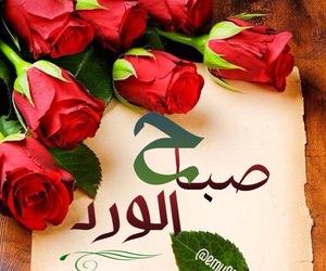 flowers, صباحكم, and صباح الخير image