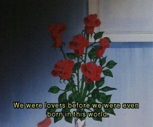 eternal, quote, and roses image