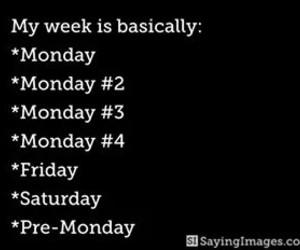 monday, funny, and week image