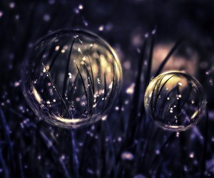 bubbles and grass image