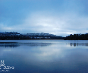 cold, finland, and nature image