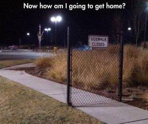 funny, lol, and home image