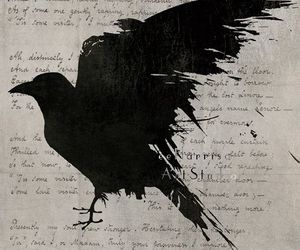 art, nevermore, and raven image