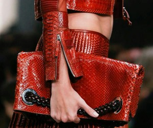 fashion, Roberto Cavalli, and ready to wear image