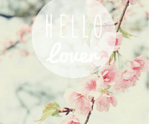background, lovely, and cute image