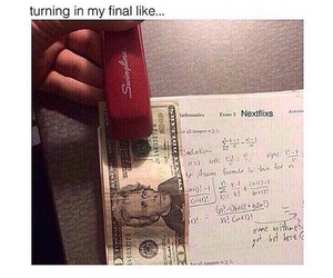 funny, exam, and finals image