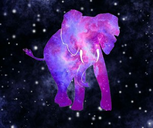 elephant, galaxy, and pink image