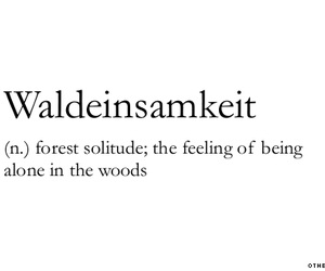 forest, alone, and definition image