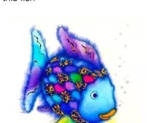 fish, funny, and rainbow fish image