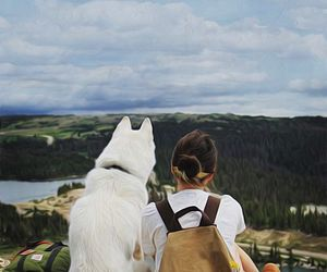 dog, travel, and friends image