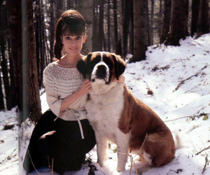 audrey hepburn and dog image