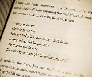 quotes, song, and mockingjay image