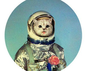 cat, astronaut, and space image