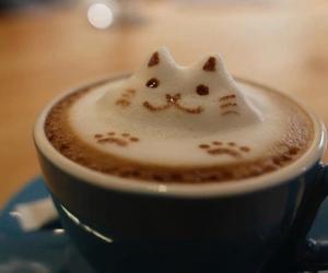 coffe, kitty, and like image