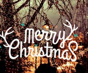 christmas, natal, and lights image