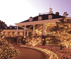 house, light, and christmas image