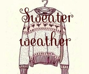 sweater, sweater weather, and winter image