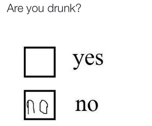 alcohol, funny, and drunk image