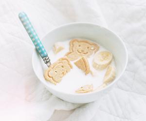 food, milk, and bear image