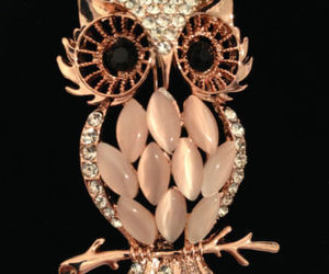 beautiful, jewels, and owl image
