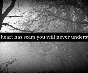 scars, heart, and quote image