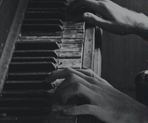 black and white, grunge, and hands image