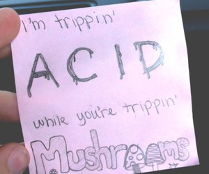 acid, bands, and drugs image