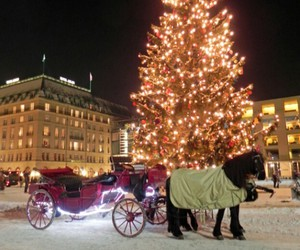 beautiful, berlin, and carriage image
