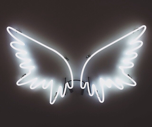 angel, neon, and wings image