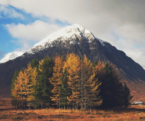 mountains, fall, and trees image