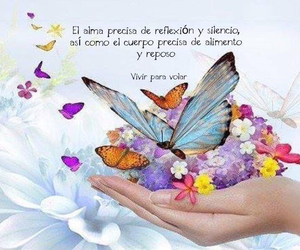 amor, sentimiento, and frases image