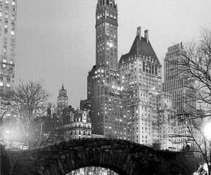 Central Park, black and white, and new york image
