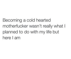 cold, motherfucker, and life image