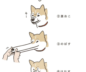 dog, funny, and drawing image